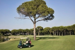 maxx-royal-belka-golf-50