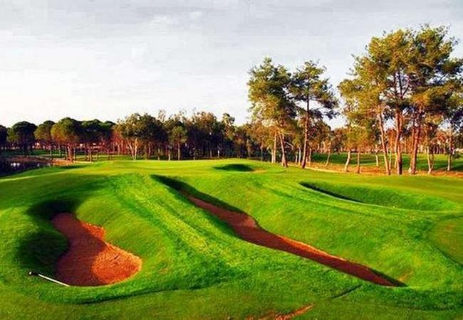 sueno-golf-belka-golf-40